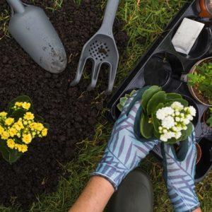 Jasa Perawatan Taman oleh Perusahaan Outsourcing Garden Service Solo