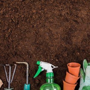 Alasan Mengapa Anda harus Memilih Jasa Garden Service Ini